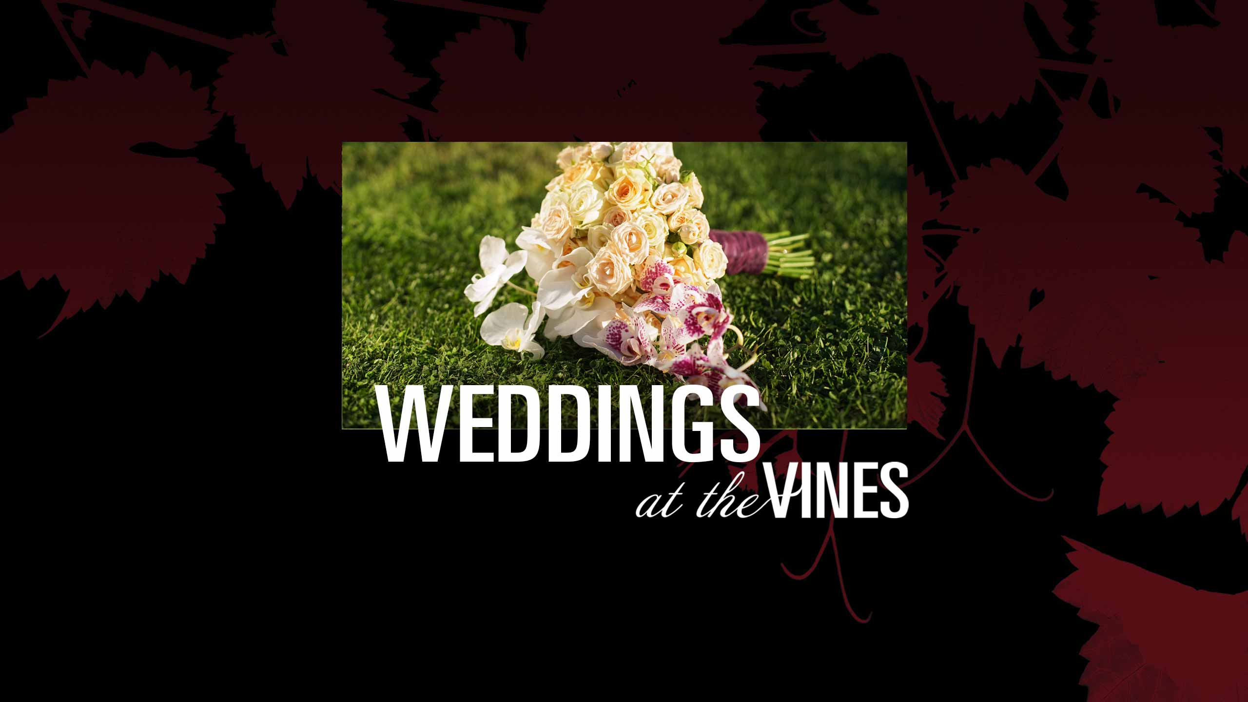 vines_weddings